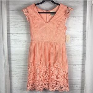 Altar'd State Blush Lace Dress Size Small